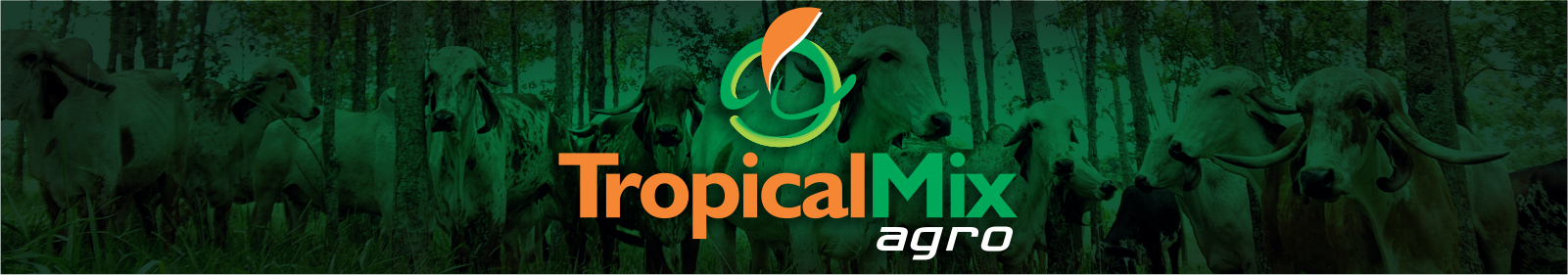 Tropical Mix Agro